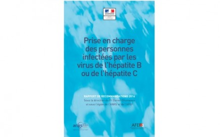 Rapport d'experts Hépatites2014